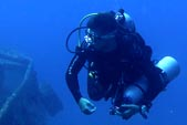 BatFish Padi Advanced Open Water Courses in Gili Islands with DSM DIVE, go deeper