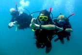 Padi Open Water Courses in Gili Islands with DSM DIVE Center, Human Experience
